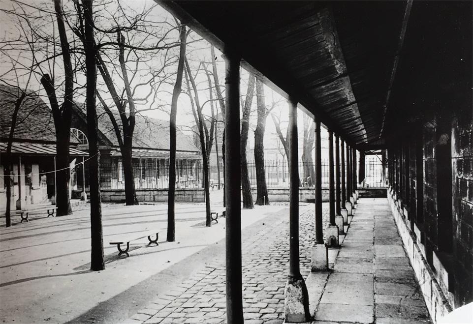 sophie travers berlin